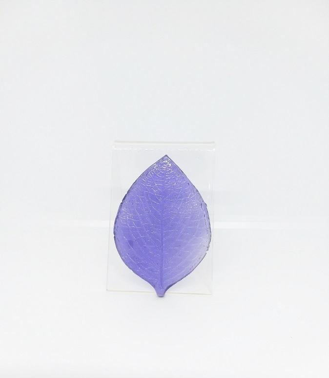 Veiner - Elliptic-Shaped A