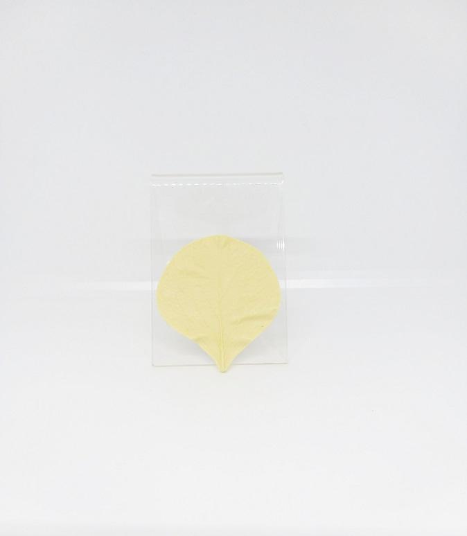 Veiner - Cordate-Shaped